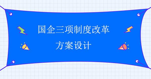 国企三项制度改革方案设计