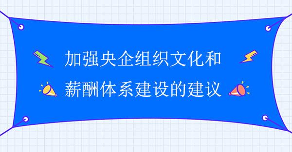 加强央企组织文化和薪酬体系建设的建议